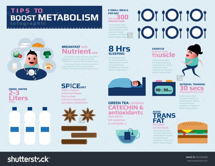 stock-vector-tips-to-boost-metabolism-infographic-health-tips-for-healthy-lose-weight-vector-illustration-302556968